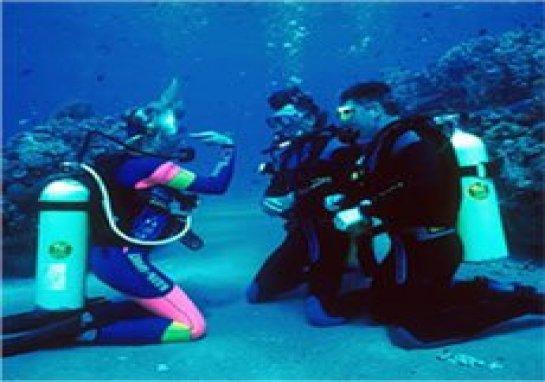 Scuba Diving & Snorkling Gear, PADI Certification Classes & Scuba ...
