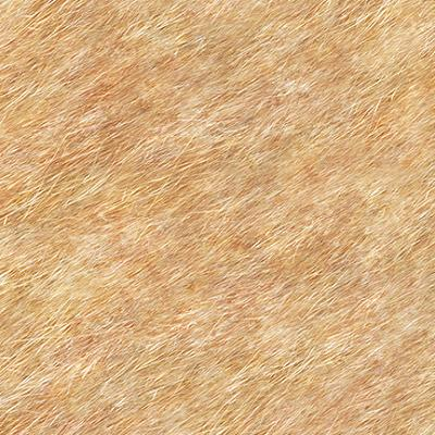 Cotton - Fur Texture Tan