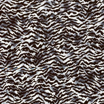 Cotton - Zebra Skin