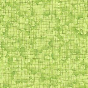 Cotton - Daisy Texture Lime