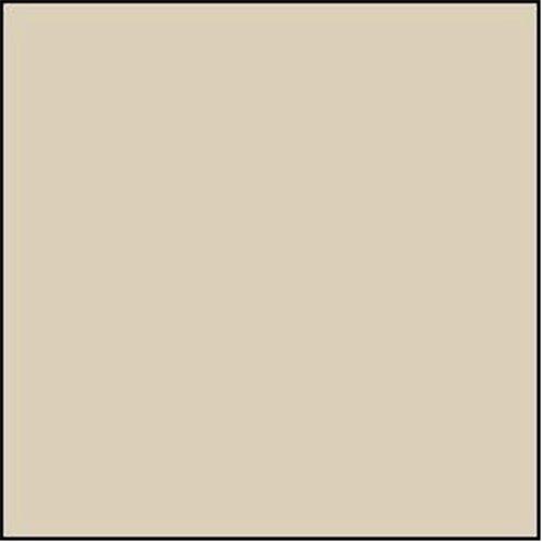 Tan Fleece Solid Fleece Fabric