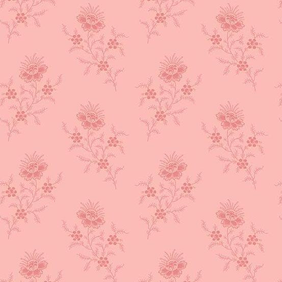 Carnation fern