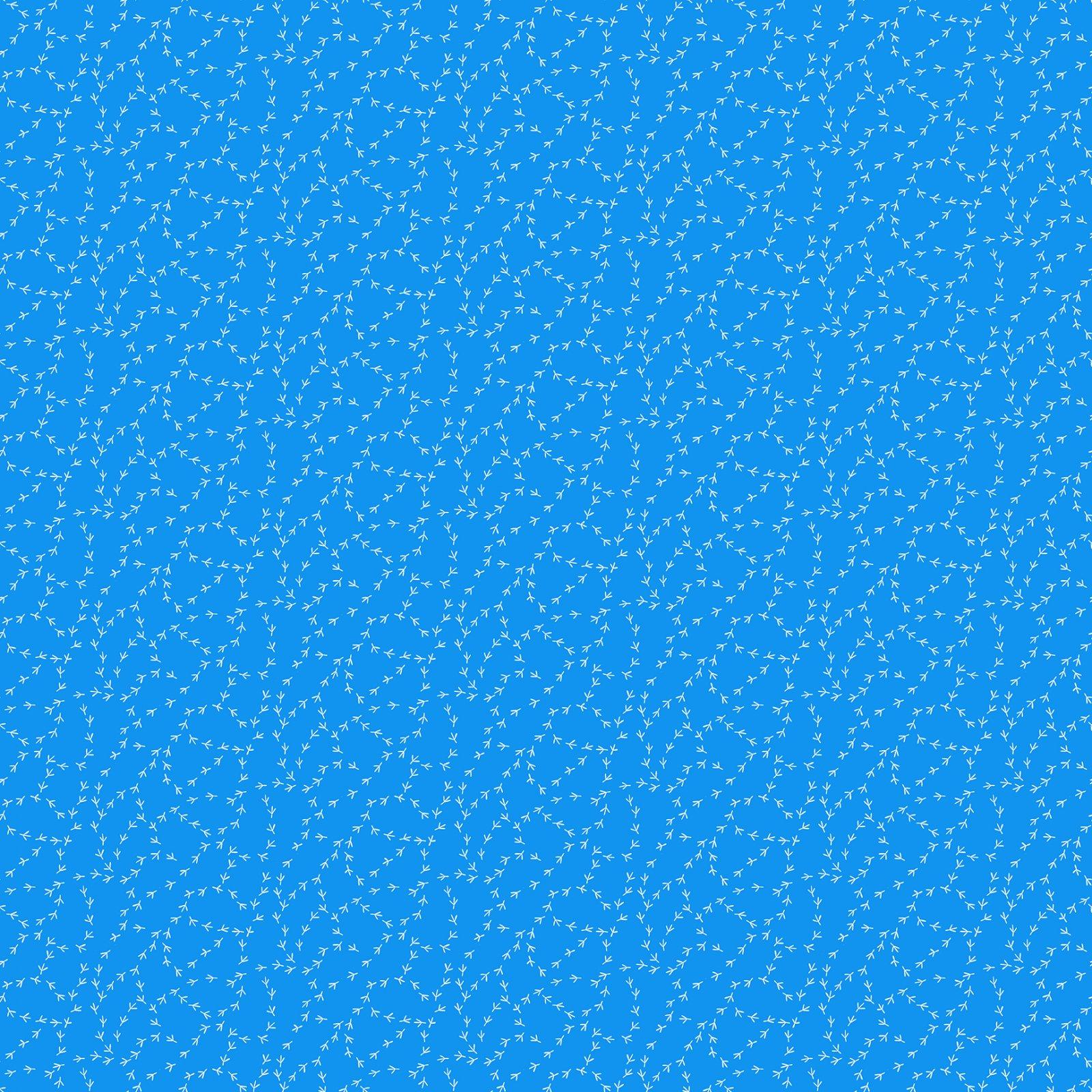 Blue tracks