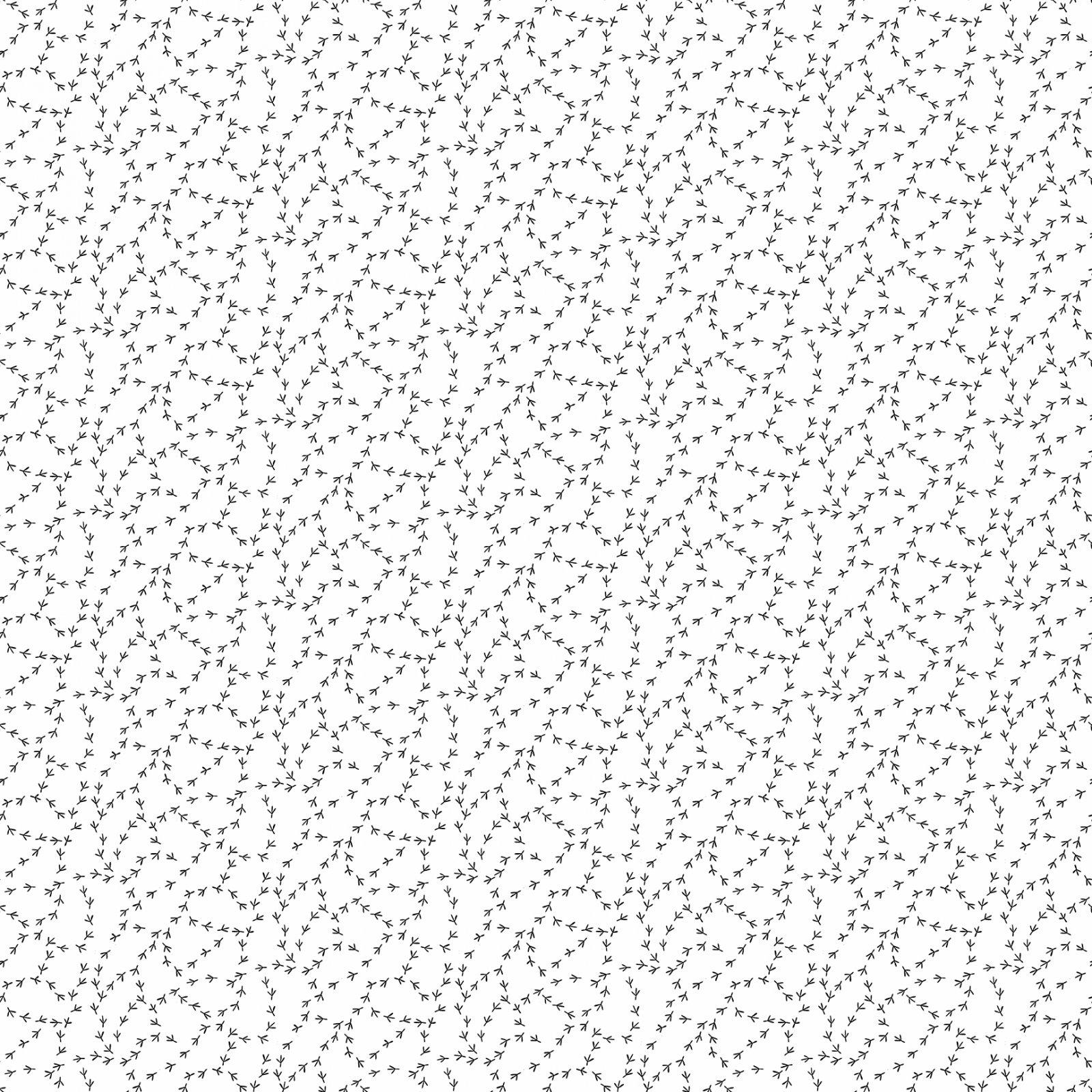 Black tracks on white
