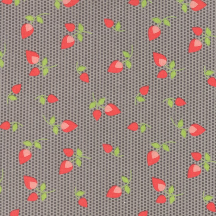 Sundrops by Corey Yoder for Moda Fabric ~29012 25~