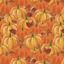 PUMPKIN SPICE by Quilters Palette Pumpkins~13887~