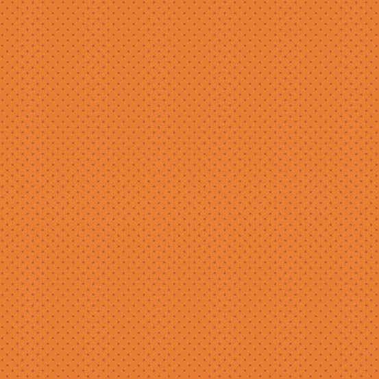 Andover Pumpkin Spice 4064 O1