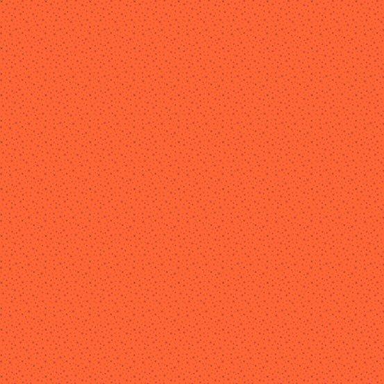 Andover Pumpkin Spice 4262 O2