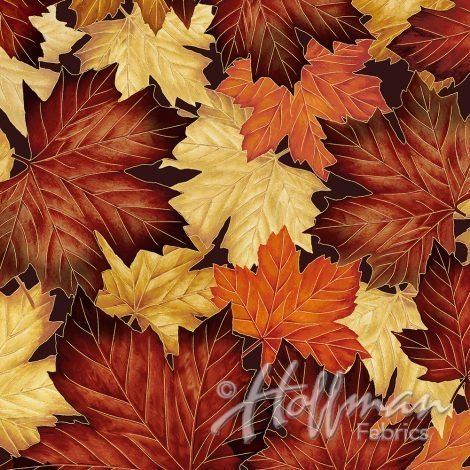 Hoffman Q7645 66G Autumn/Gold