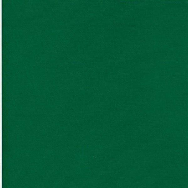 RJR Cotton Supreme Solids 9617 329
