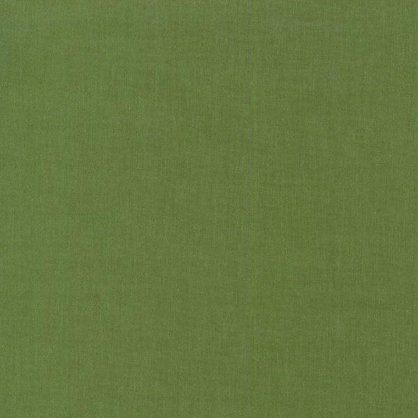 RJR Cotton Supreme Solids 9617 164