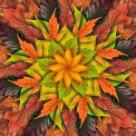 Autumn Dream Big Leaf Digital Panel 43in x 43in