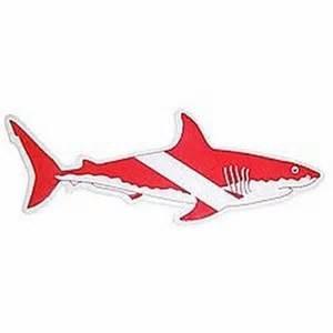 Shark Sticker 12 inch