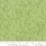 Geometry :  Graph Buckminster - #1495-20 - Janet Clare
