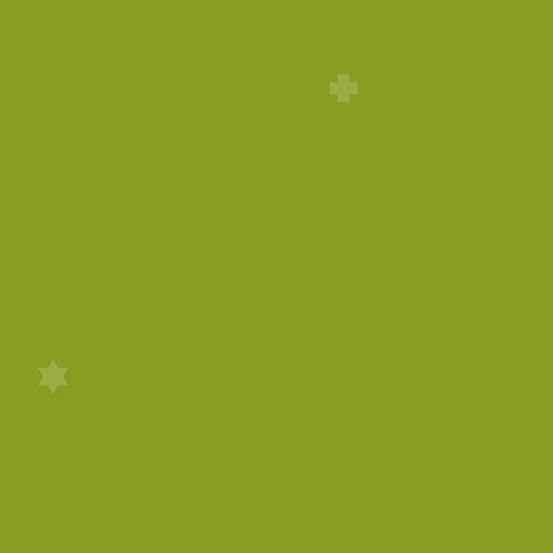 Insignia 2018 - Lime - #A-8451-G1
