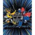 Hasbro Collection - Transformers Panel - #95020110P-01