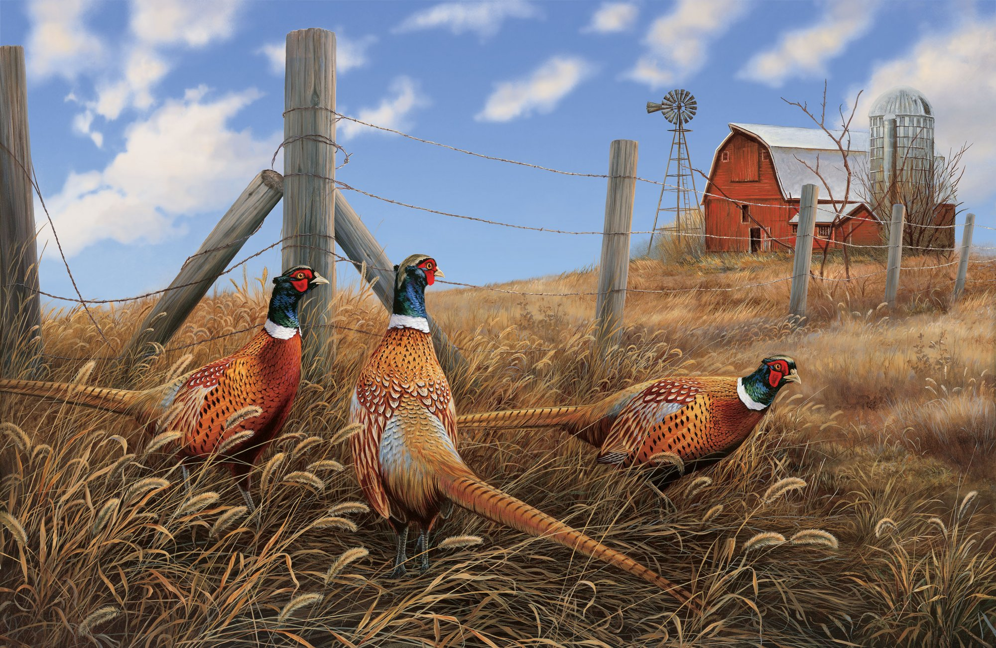 Naturescapes - Pheasant Run - #DP22702-14 - 28 Panel (#212)