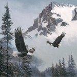Naturescapes - When Eagles Soar - 43 Panel - #DP23039-94 - (#235)
