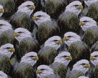 Majestic Eagles - Eagle profiles