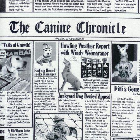 K9 Chronicles - #C9705-White - By Gail Cadden