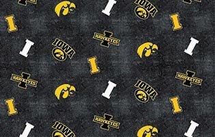 College Prints  - #IA-1131 - University Of Iowa