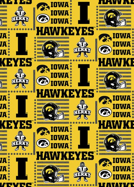 College Prints - #IA-1134 - University Of Iowa
