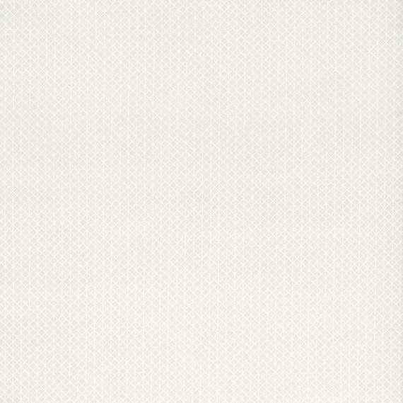 Cotton + Steel Basics - Netorious - #5000-1