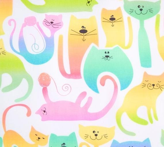 Kat-tastic (Kanvas) - 06398 01