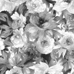 Nocturne : Flower Bed Black & White - #MAS9612-JW
