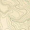 Meridian - #50034-1 - Cream Topography