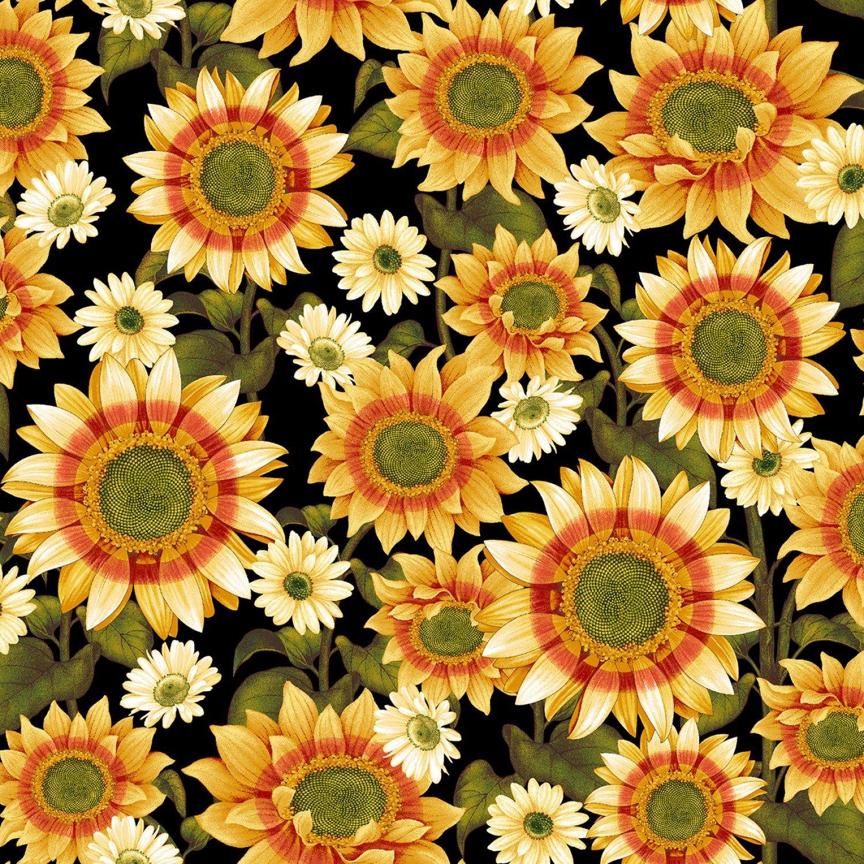 Pumpkin Harvest - Sunflower Black