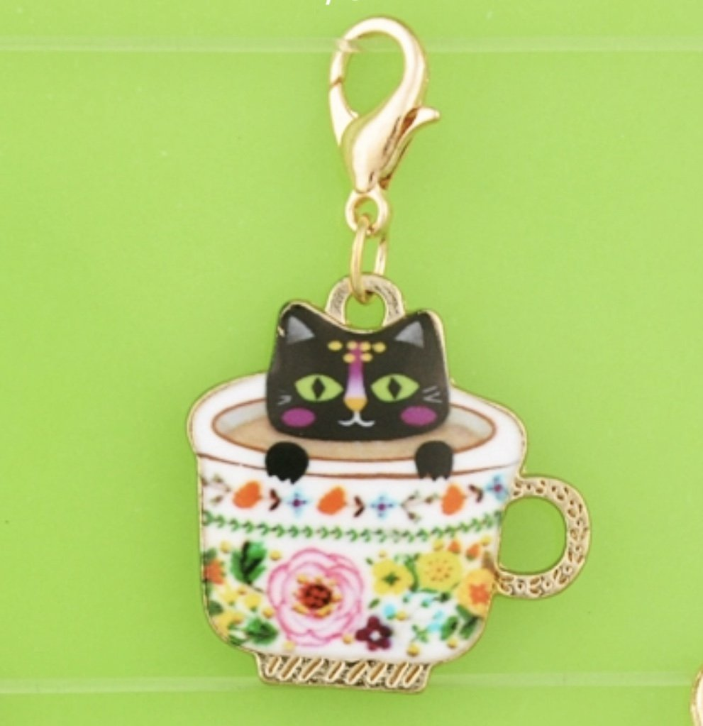 Charm - Teacup Kitten