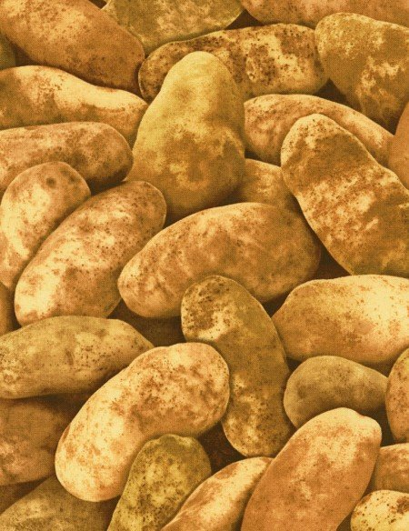 Brown Potato Fabric