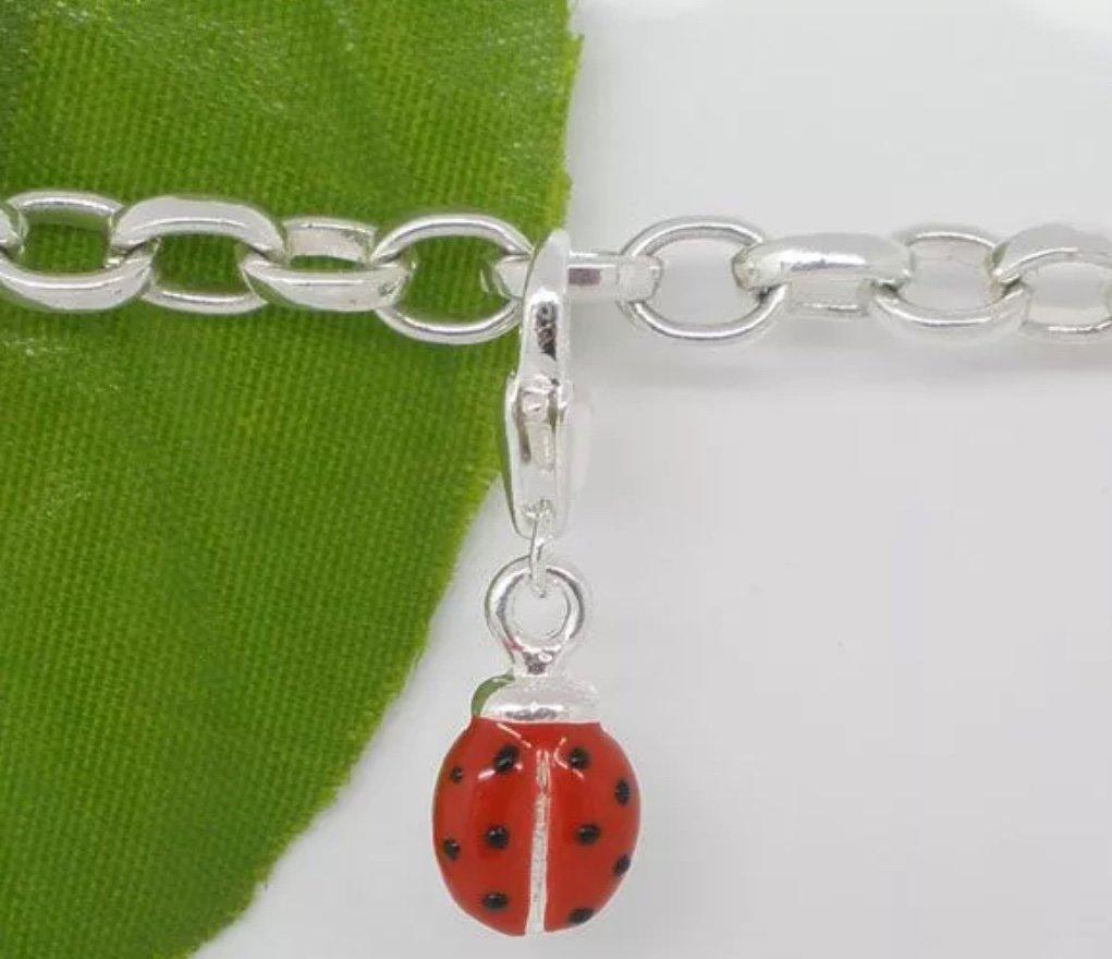 Charm - Ladybug