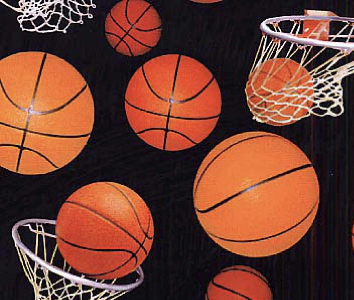 Basketballs with Nets
