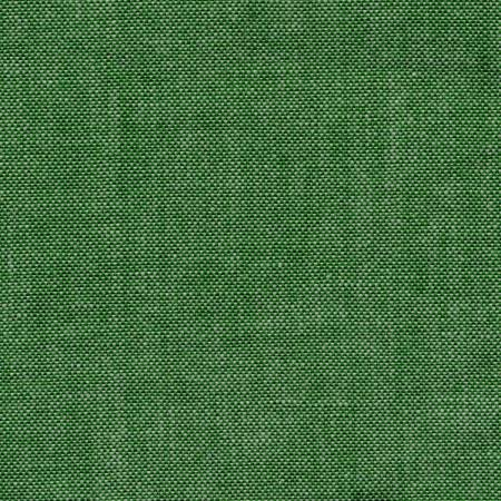 TTWL- Green Chambray