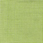 TTWL Mini Check Lime
