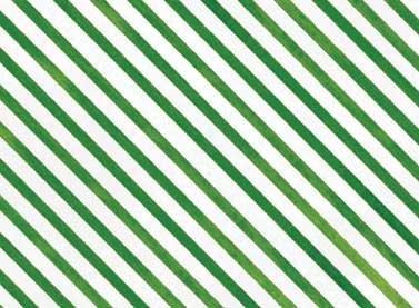 Snow Fun - Green Stripe