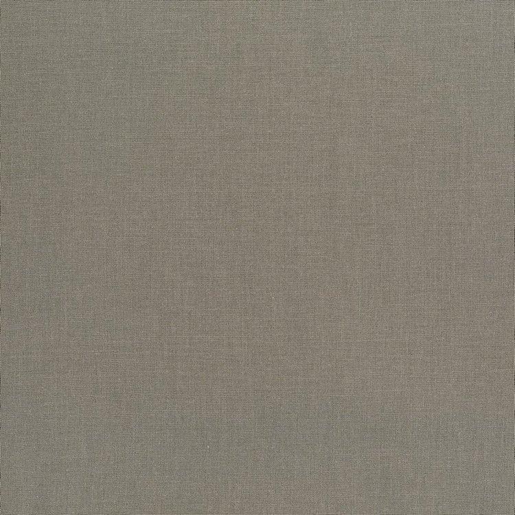 Cotton Supreme Solid  - 431 - Shadow
