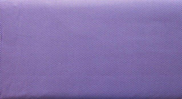 Paintbrush Studio Essentials Micro Dot Purple/White
