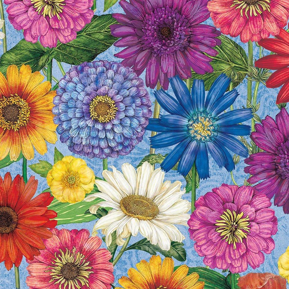 Wilmington prints/  Blossom Bloom