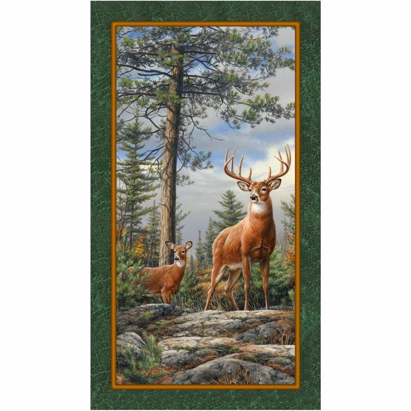 Evergreen Deer Mountain