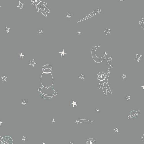 Capsules Stargazer-To Bearfinity and Beyond!