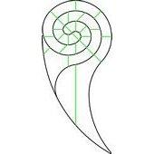 Nautilus Long Tail