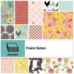 Prairie Sisters 10 Layer Cake