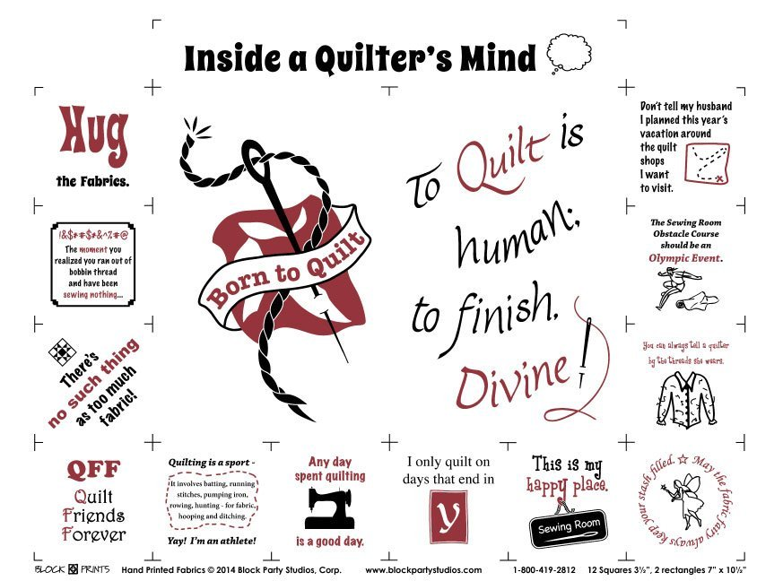 Inside A Quilter's Mind Panel