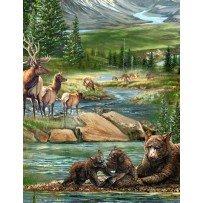 Bear Meadow - River, Mountain, Bear, Elk