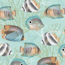 Seaside Dream - Various Fish on Aqua