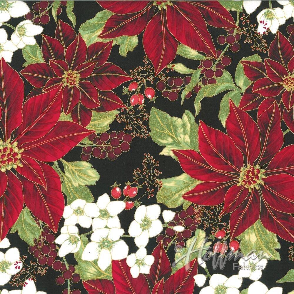 Winter Blossom -red poinsettias w/ black background