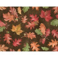 Colors of Fall - Fall leaves on brown